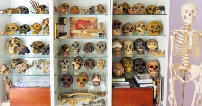 Colección Roberto Sáez