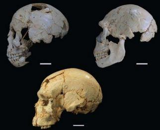 Atapuerca Sima