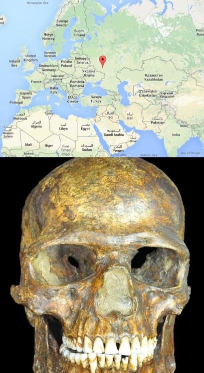 Cráneo de Kostenki