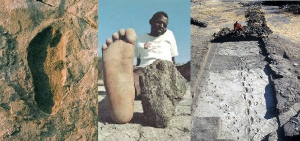 The oldest human footprints by continent