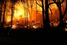 fuego-natural