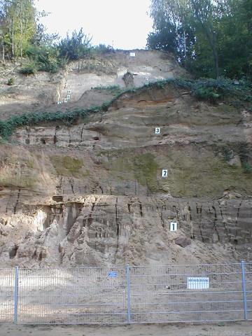 Yacimiento de Mauer (fuente: Wikipedia)