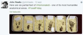 #FossilFriday nr 3-4