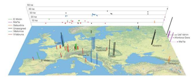 ADN europeo