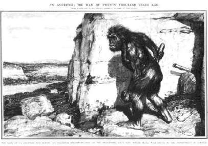 Neandertal La Chapelle-aux-Saints, descripción de Marcellin Boule