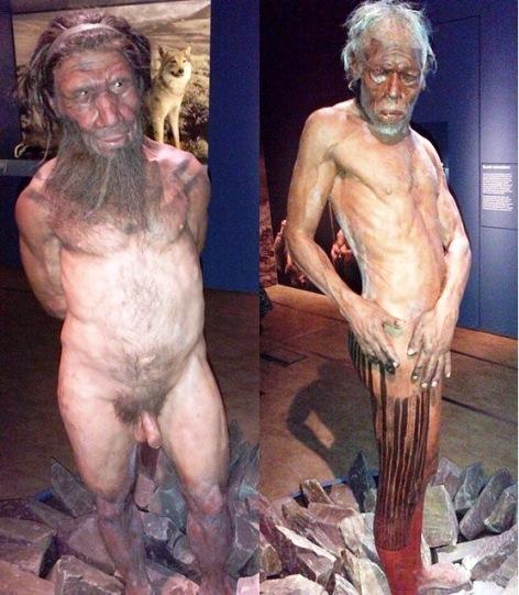 Neandertal v. Sapiens