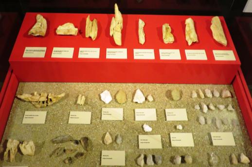 Abrigo neandertal de Navalmaíllo, Pinilla del Valle