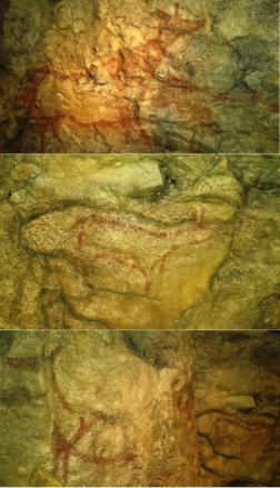 Ciervas cueva El Pendo