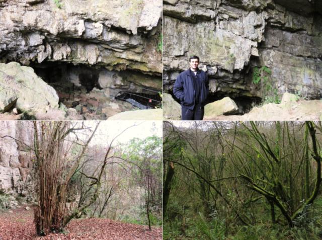 Cueva El Pendo entorno