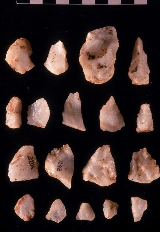 Oldowan tools from Sterkfontein