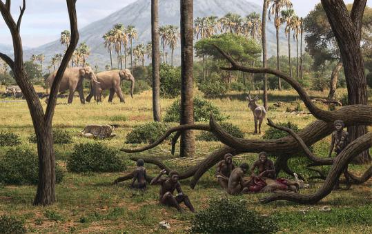 Homo habilis hunters