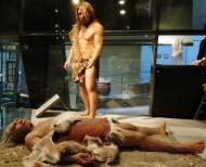 Neandertales y cognición