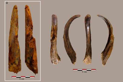 Wooden digging stick Aranbaltza III