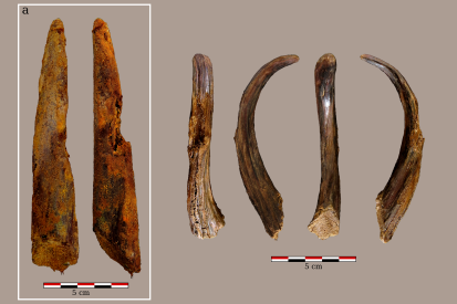 Aranbaltza III wooden digging stick