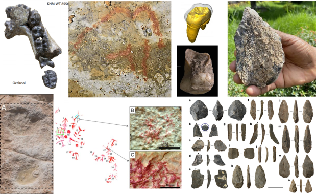 Paleoantropología: novedades 3er trimestre2020