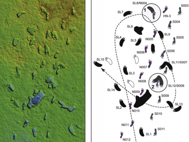 Las huellas de White Sands: el viaje de dos humanos hace 12.000años