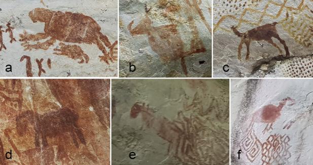 Preguntas y respuestas sobre las pinturas rupestres de la amazoníacolombiana