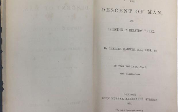 """150 aniversario de """"El origen del hombre"""" (Darwin,1871)"""