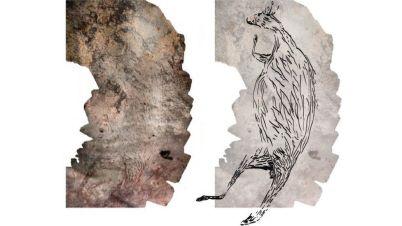 Pintura de canguro en Australia
