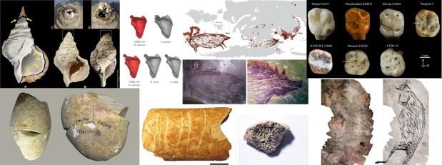 Paleoantropología: novedades 1er trimestre2021