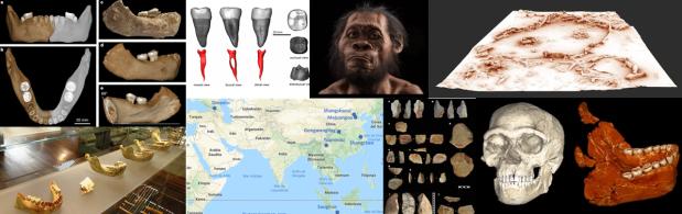 7 años, 7 hitos en paleoantropología