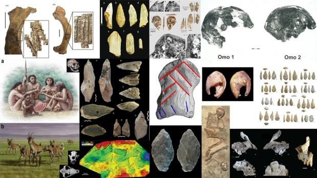 Paleoantropología: novedades 3er trimestre2021