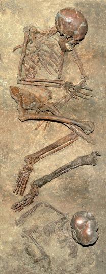 Esqueletos de Qafzeh 9 y 11